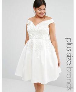 Chi Chi Plus | Приталенное Платье Для Выпускного С Кружевной Вышивкой Chi Chi London Plus