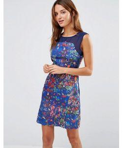 Lavand.   Платье С Поясом Сетчатой Кокеткой И Цветочным Принтом Lavand