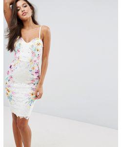 Lipsy | Платье-Футляр С Симметричным Принтом На Кружеве