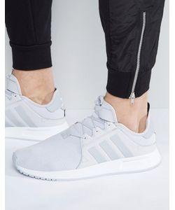 adidas Originals | Кроссовки Xplr Bb1107