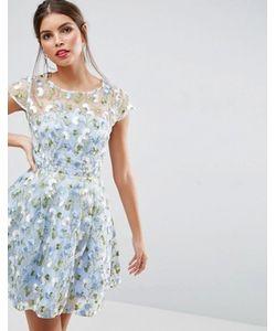 Asos | Короткое Приталенное Платье С Цветочной Вышивкой Salon