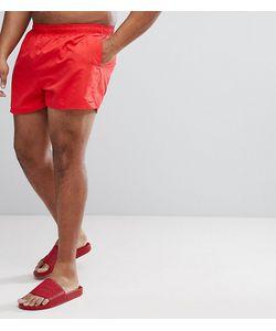 Nike | Короткие Шорты Для Плавания Plus Volley Ness8830-614