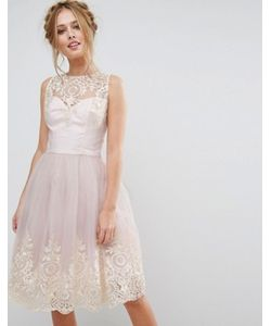 Chi Chi London | Платье Миди Из Премиального Кружева С Фигурным Краем Сзади Chi Chi