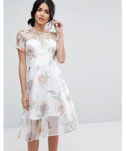 Chi Chi London | Платье Миди Из Органзы С Крупным Цветочным Принтом