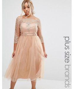 Chi Chi Plus | Платье Для Выпускного С Вышивкой И Тюлевой Юбкой Chi Chi London