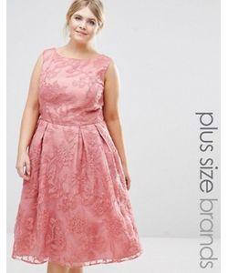 Chi Chi Plus | Кружевное Платье Миди Для Выпускного Chi Chi London Plus