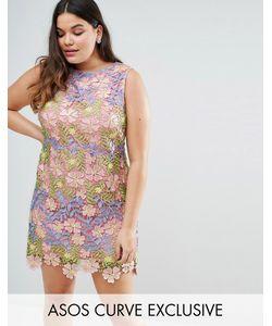 ASOS CURVE | Кружевное Платье-Трапеция Мини Salon