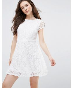 Glamorous   Skater Dress With Lace Sleeves
