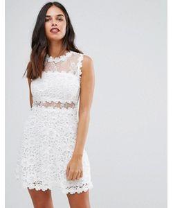 AX Paris   Короткое Приталенное Кружевное Платье