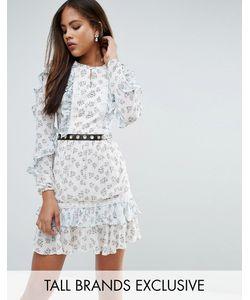 True Decadence Tall | Короткое Приталенное Платье С Цветочным Принтом И Оборками