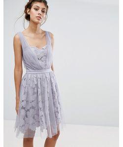 Little Mistress | Платье Из Тюля И Кружева С Присборенными Лямками