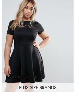 Club L Plus | Короткое Приталенное Платье С Кружевными Вставками