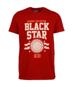 Black Star Wear | Футболка Мужская Original Collection