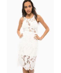 Guess | Кружевное Коктейльное Платье Средней Длины