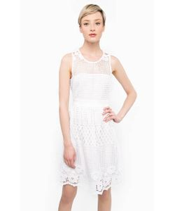 Liu •Jo | Ажурное Платье Приталенного Силуэта