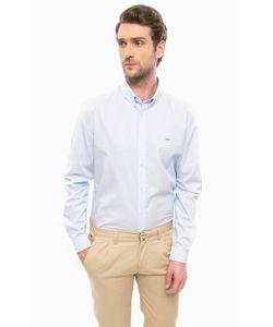 Lacoste | Приталенная Рубашка Из Хлопка