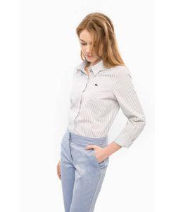Lacoste | Хлопковая Рубашка В Полоску