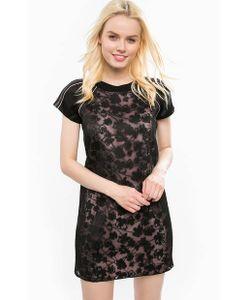 Juicy Couture | Короткое Кружевное Платье На Молнии