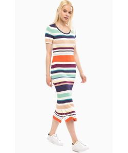 Tommy Hilfiger | Разноцветное Обтягивающее Платье В Полоску
