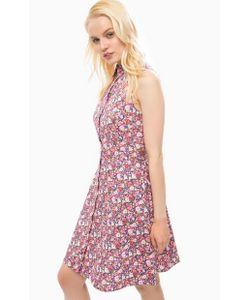 Sugarhill Boutique | Приталенное Платье Из Хлопка С Цветочным Принтом