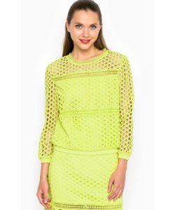 Miss Sixty | Кружевная Блуза С Укороченными Рукавами