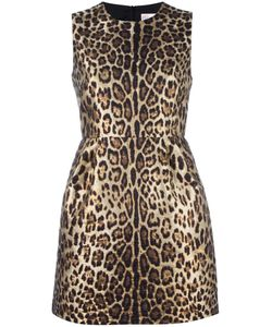 Red Valentino | Leopard Print Dress 42 Polyester/Polyamide/Cotton/Polyester