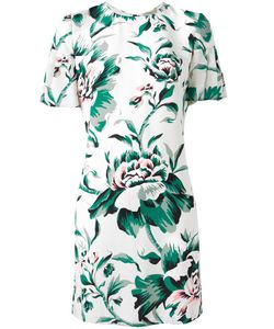 Burberry | Print Dress 10 Silk/Polyester