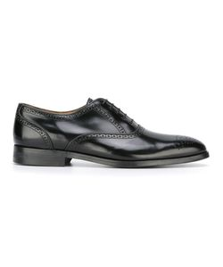 Paul By Paul Smith | Lace Up Brogues 11 Calf Leather/Leather Paul By