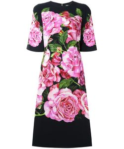 Dolce & Gabbana   Print Cady Dress 36
