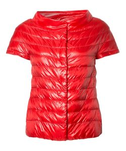 Herno | Glossy Quilted Jacket 46 Nylon