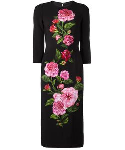 Dolce & Gabbana | Print Cady Dress 42