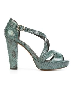 Tila March | Nevada Sandals 36 Watersnake Skin/Leather