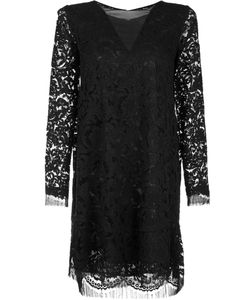Adam Lippes | Lace Shift Dress 8 Cotton
