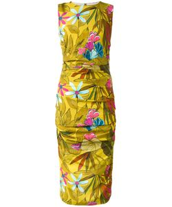 Eggs | Print Fitted Dress