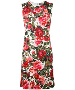 Dolce & Gabbana | Rose Shift Dress