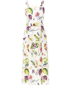 Adam Lippes | Botanical Print Dress