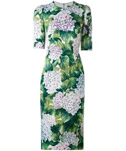 Dolce & Gabbana | Платье С Принтом Гортензии