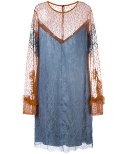 Nina Ricci | Lace Shift Dress 36 Polyamide