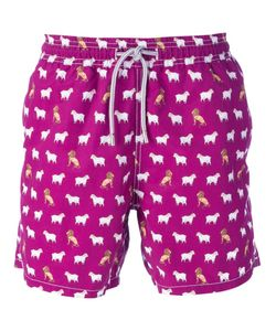 MC2 | Multicoloured Animal Printed Swim Shorts From