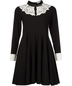 MURRAL | Contrasting Lace Collar Dress