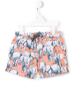 Sunuva | Elephant Swimshorts 7 Yrs