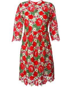 P.A.R.O.S.H. | Платье С Вышивкой Макраме