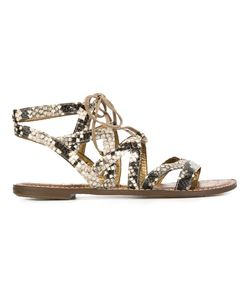 Sam Edelman | Gemma Sandals