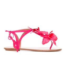 Aquazzura   Flower T-Bar Sandals Size 38.5