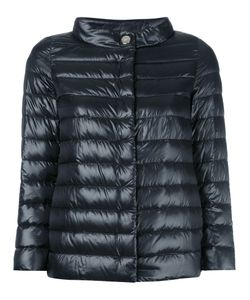 Herno | High Neck Puffer Jacket 48 Polyamide/Polyurethane/Polyester/Cotton