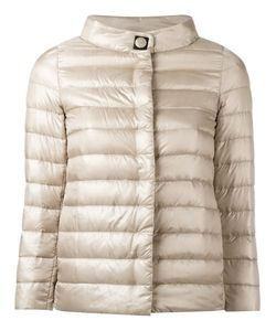 Herno | High Neck Down Jacket 44 Polyamide/Polyurethane/Polyester/Feather Down