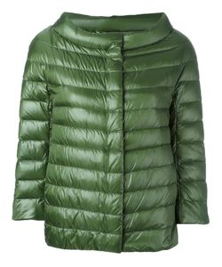 Herno | Padded Jacket 44 Polyimide/Polyamide/Cotton/Feather Down