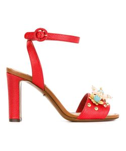 Dolce & Gabbana | Босоножки С Цветочной Аппликацией