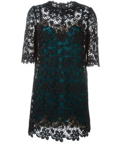 Dolce & Gabbana | Embroidered Lace Dress