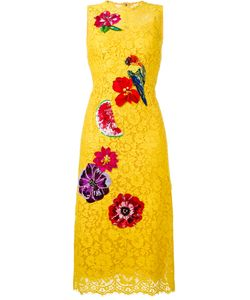 Dolce & Gabbana | Embellished Lace Dress 42 Cotton/Polyamide/Viscose/Nylon